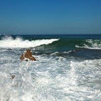 рифы :: evgeni vaizer