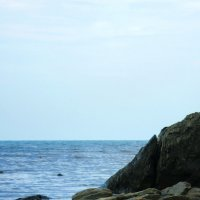 Акула :: Samadhi Om