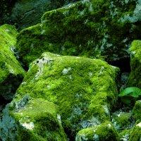 Зелёные камни :: HelenaZ Z