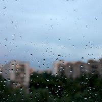после дождя :: Сергей Цыбаков