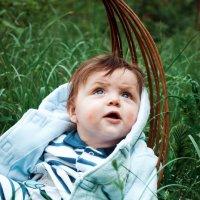 мальчик-голубоглазка :: Саша Хмелёвская