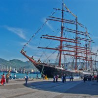 барк СЕДОВ у новороссийского порта :: Валерий Дворников