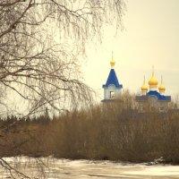 Радово-Покровская обитель :: Евгений Шестаков