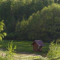 Домик на Лисьих горах :: Виктория Трунова