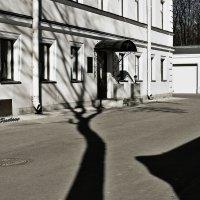 Женщина-тень.. :: Марина Павлова