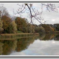 Несвиж, замковый пруд :: Irina