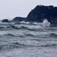 Взволновалось Японское море (о. Кюсю) :: Yury Mironov
