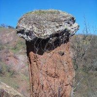 каменный гриб :: Maks Wraith