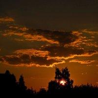 Летний закат... :: Павел Зюзин