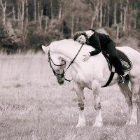 Фотосесии с лошадьми :: Кристина Плавская