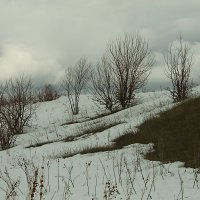 Хмурая весна 2014 года! :: Вячеслав Бакаев