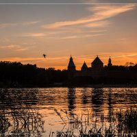 Nature Life :: Евгений Никифоров