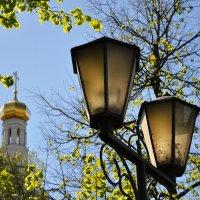 Вся жизнь проходит в битве с тьмою :: Ирина Данилова
