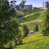 Уфа - город на холмах :: Любовь Потеряхина