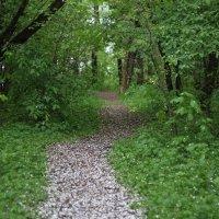 Дорога в рай... :: Инна Чеботарёва