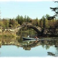 Горбатый мостик :: Светлана Дмитриева