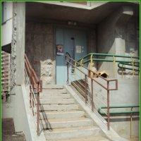 Раз ступенька, два ступенька будет лестница... :: Ольга Кривых