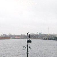 Из окна Мраморного дворца :: Ольга Иргит