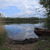 У озера :: Yury Novikov