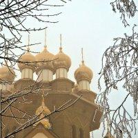 Золотые купола :: Юлия Семенова