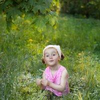 В траве сидел Дашонок :: Anna Lipatova