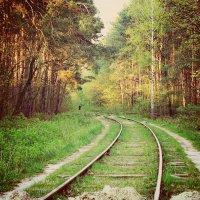 Лесной путь... :: Катюша Лебедева