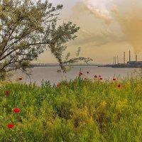 Природа и промышленность ... :: Denis Aksenov
