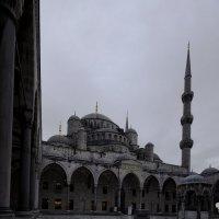 Голубая мечеть :: Дмитрий Близнюченко