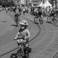 Велопробег :: Наталья Rosenwasser