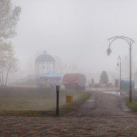 утро в парке 2 :: Евгений Герасименко