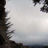 В горах Троодос :: Нелли *