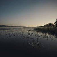 Пробуждение... :: Митя Шишкин