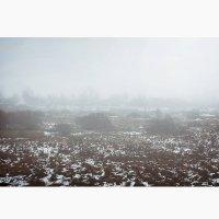 Снег :: Катюша Балабанова