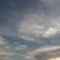 взгляд с небес... :: Наталья Кочетова