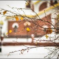 Начало зимы :: Василий Хорошев