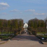 Как прекрасен этот парк, посмотри... :: Ирина Михайловна