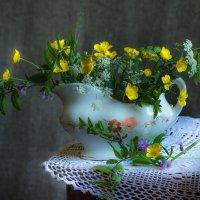 Лютики и прочие сорняки. :: Ирина Чикида