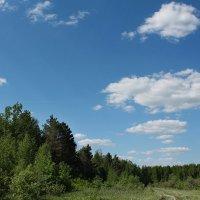 Почти лето :: Эркин Ташматов