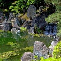 В парке замка Нидзе в Киото :: Геннадий Мельников