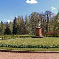 Мемориал :: Олег Попков