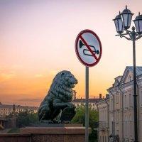 Не шуметь.Лев очень нервный.) :: Александр Рамус