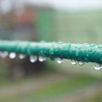 после дождя :: Татьяна Калинова
