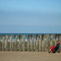 Размышления у моря :: Marina de Weerdt