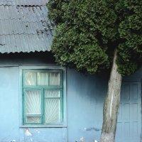 Старый гараж. :: Анастасия Ковальчик