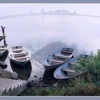 Утро на Сиверском озере :: Валерий Талашов