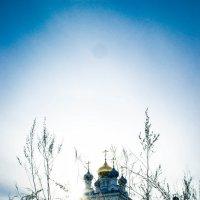 Перед пасхой :: Елена Захарова