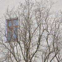 Окно в небе :: Алеся Пушнякова
