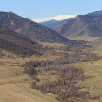Вид с перевала Чике - Таман :: Галина Шепелева