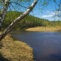 На берегу реки :: Сергей Шаврин