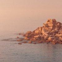 Тёплый утренний свет :: Эдуард Ефремов